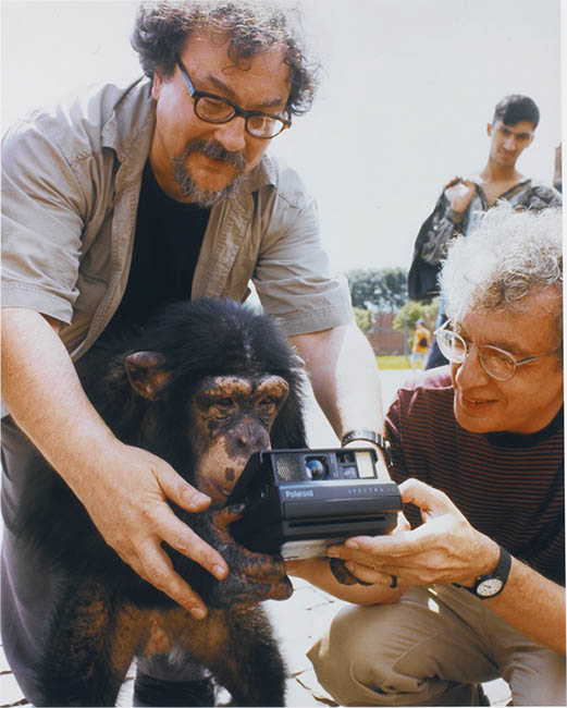 Chimpanzee Photographers Work Sells For Over $  75,000 at Auction monkeyteach1
