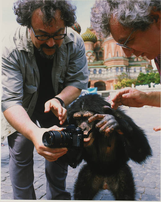 Chimpanzee Photographers Work Sells For Over $  75,000 at Auction monkeyteach2